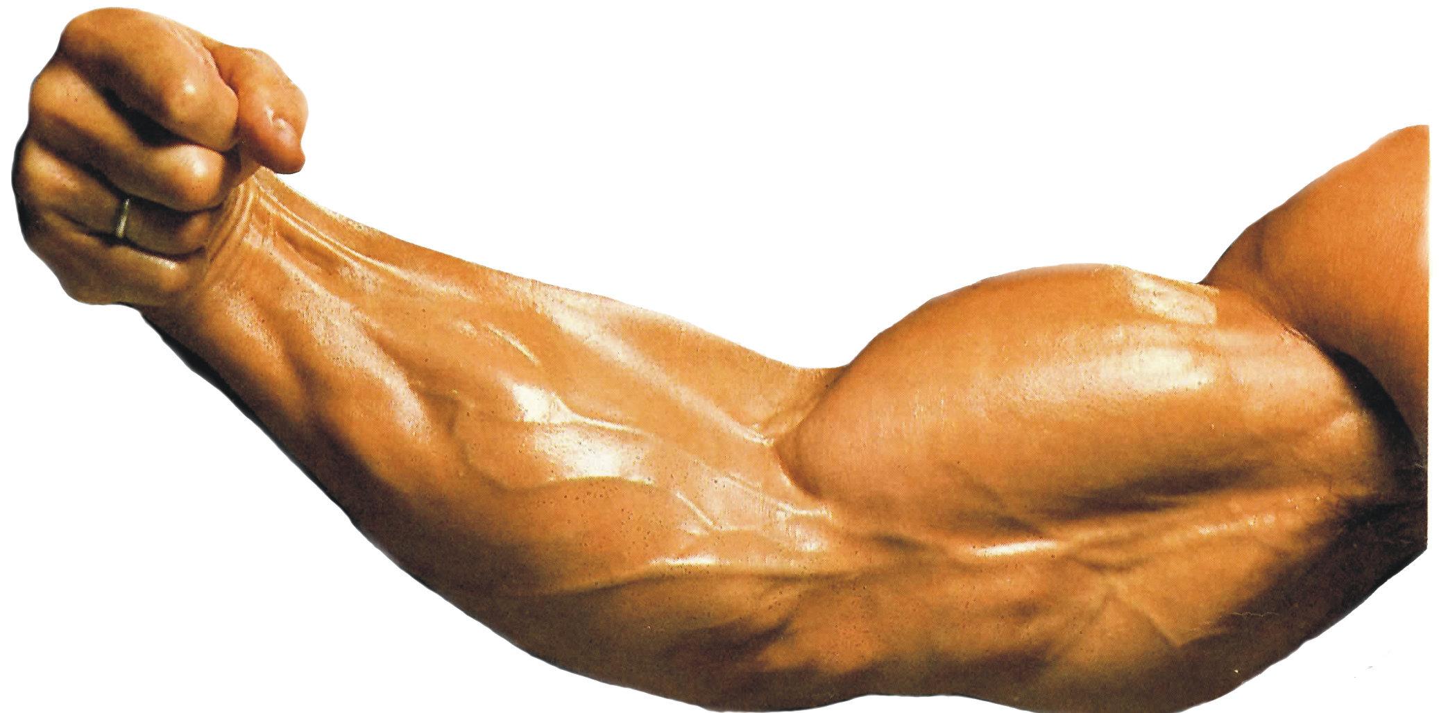 vucut-gelistirme-en-iyi-10-biceps