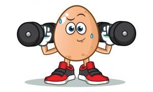 vücut yaparken yumurta yiyin çünkü