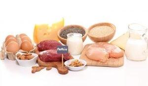beslenmede proteinin önemi nedir